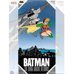 BATMAN Y ROBIN POSTER DE VIDRIO THE DARK KNIGHT RETURNS DC 30X60 CM