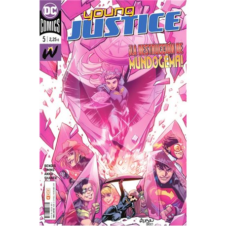 YOUNG JUSTICE NÚM. 05