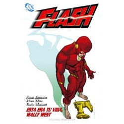 Flash Nº 03: Esta era tu vida, Wally West
